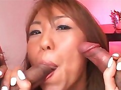 blowjob sucking erotic oral sexy threesome